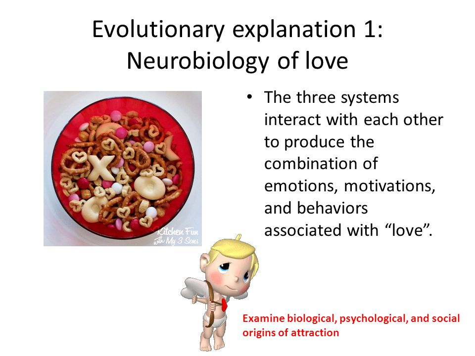 Of Love The Psychology Examining