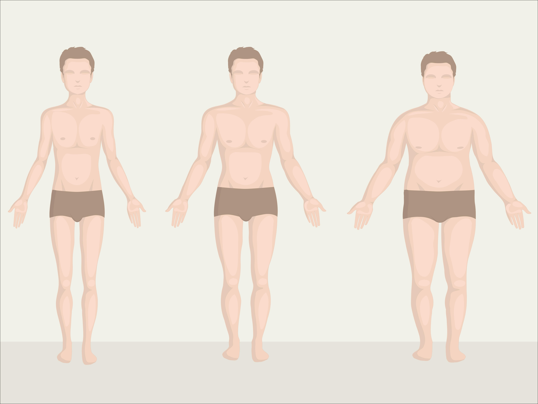 Online Body Dating Type